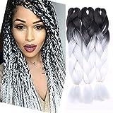 RichChoices 3 Pcs/300g 24'' Two Ombre Kanekalon Braiding Hair Synthetic Braid Hair Extensions Dark Black to White