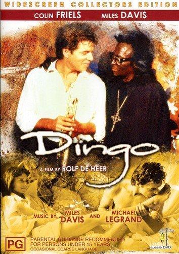 Bild von Dingo