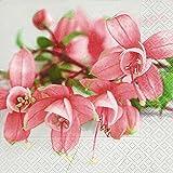 Servdeko Serviette Servietten verschiedene Blumenmotive zur Auswahl edel 33x33 cm 20 Stück 3-lagig Frühling Sommer Kaffee Geburtstag (Fuchsie)