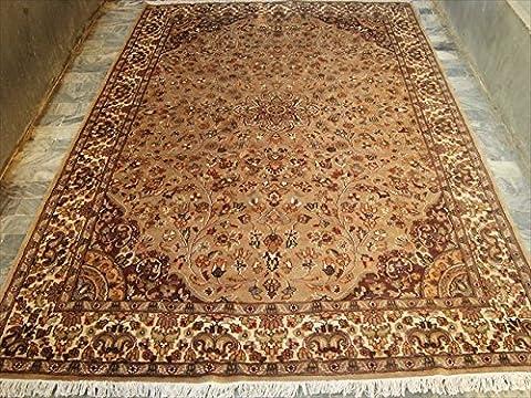 Bereich Teppiche Beige Tan Flowral Rechteck handgeknotet Seide Wolle Teppich (9x 6) '