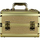 Ver Beauty VK1302 2-Tiers Trays Makeup Train Case - Best Reviews Guide
