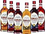 6 Flaschen Soplica Mix 30% vol. Alk. a 0,5L 6 Sorten