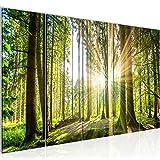 Bilder Wald Landschaft Wandbild 200 x 80 cm Vlies - Leinwand Bild XXL Format Wandbilder Wohnzimmer Wohnung Deko Kunstdrucke Grün 5 Teilig -100% MADE IN GERMANY - Fertig zum Aufhängen 503855b