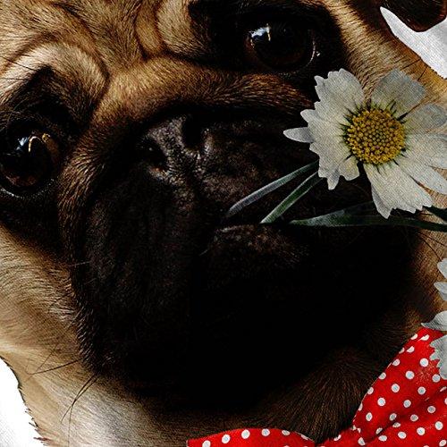 Mops Welpe Bewunderer Datum Blume Damen Schwarz S-2XL Muskelshirt | Wellcoda Weiß