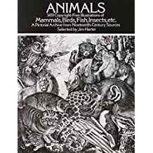 Animals: 1,419 Copyright-Free Illustrations of Mammals, Birds, Fish, Insects, etc (Dover Pictorial Archive) by Jim Harter (Editor) ?€? Visit Amazon's Jim Harter Page search results for this author Jim Harter (Editor) (2-Jan-2000) Paperback