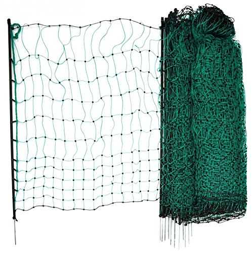 Filet de clôture pour poules et lapins 50m