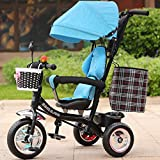 Multifunktionale Kinder Dreirad Baby Trolley 1-6 Jahre alt Infant Kind Fahrrad abnehmbare Jungen und Mädchen Fahrrad mehrfarbige Tuch Markise (Farbe : Black-D)