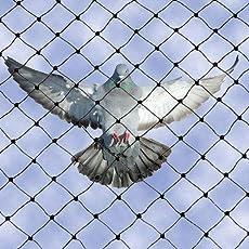 SHOP BY ROOM Anti Bird Quality Nylon Net with Tie-Pie Accessories, 8 X 12 Foot (SBRBirdnet_1, White)