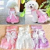 PLHF Vestido de novia de perro Falda de encaje Osito de peluche vestido de princesa Perros pequeños Tejido de alta calidad Transpirable absorbente del sudor suave Sensible Fácil de limpiar Lamiendo bolas , white , XL