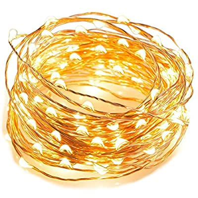 Angelina(TM) 2 ×Set 5M 50 LEDs Battery Powered String Lights Silver Wire Fairy Lights Christmas Decoration Indoor Use Warm White - inexpensive UK light shop.