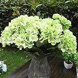 LIFECART 7cabezas Artificial hortensias seda ramo de flores decoración–verde