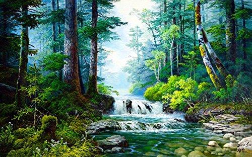 Wowdecor DIY Malen nach Zahlen Kits Geschenk für Erwachsene Kinder, Malen nach Zahlen Home Haus Dekor - Wald Grün Bäume Strom Landschaft 40 x 50 cm Rahmen