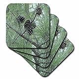 Jackie Popp Wildlife N natur Blumen–Tannenzapfen–Untersetzer, Conjunto de 8--suave