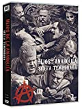 Sons Of Anarchy - Stagione 6 (Import - Spagna)