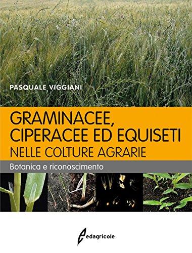 Graminacee, ciperacee ed equiseti nelle colture agrarie. Botanica e riconoscimento por Pasquale Viggiani