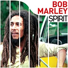 SPIRIT OF BOB MARLEY [VINYL]