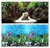 Aquarium Fotorückwand Beidseitig Rückwandfolie 200x40 cm