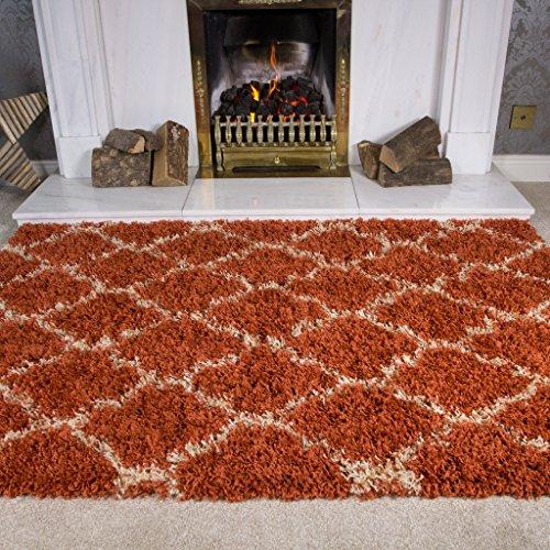Thick Terracotta Cream Trellis Shaggy Rugs For Living Room