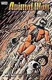 Image de Animal Man Vol. 6: Flesh And Blood