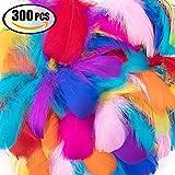 Vidillo Plumes Colorées, 300pcs Naturel Plume Décoration, Idéal Pour Costumes, Chapeaux, Décoration d'intérieur Fete Mariage Anniversaire, Multicolore