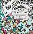 Rachel Ellen Sunshine& Bloom Livre de coloriage pour adultes