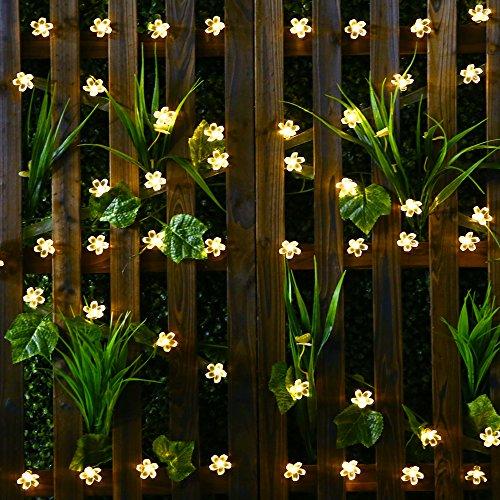 Solar String Lights - Solar Garden Lights mit 50 Blume LED Leuchten für Garten Dekoration, Multi-Color Festival, Christmas Party Atmosphäre Solar Fairy Lights Outdoor (Warmes Weiß)