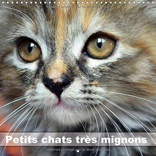 Petits Chats Tres Mignons 2017: Photos Fascinantes Des Tigres De Salon Prises En Gros Plan. (Calvendo Animaux) par Jennifer Chrystal