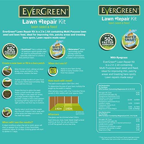 Zoom IMG-2 kit di riparazione per erba