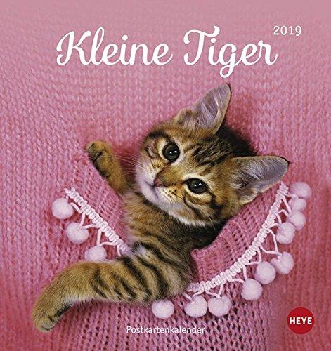 Katzen Postkartenkalender Kleine Tiger - Kalender 2019