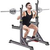 Squat Rack Bench Press Multi-Function Barbell Rack Load 250KG Adjustable Height and Width?Super Long Bumper? Home Gym Portabl
