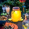 Esotec Solarleuchte Einmachglas Satin Glas, Lichtfarbe wählbar 102078 von Esotec