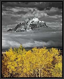 """Mt. Moran avec Aspens-piercing Teton Grand National Park, Jackson Hole-Valley, Wyoming, USA Original la photographie de Paysages Affiche encadrée en aluminium pour bureau et maison 16 """"x 20 Photographie"""""""