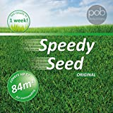 Grass Seed, Lawn Seed, Speedy Grass Seed 1.4KG Premium Quality Seed 84 m2