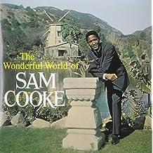 The Wonderful World of [Vinyl LP]