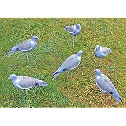 Nitehawk - Lot de 6 appelants pigeons - entiers et peints - pour la chasse/le tir