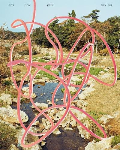 Super Extra Natural!: Images from Japan 2004-2016 di Emily Shur