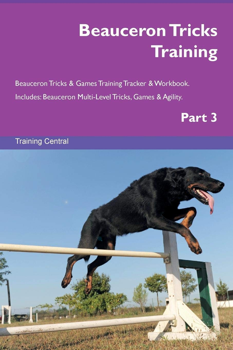 Beauceron Tricks Training Beauceron Tricks & Games Training Tracker & Workbook.  Includes: Beauceron Multi-Level Tricks, Games & Agility. Part 3