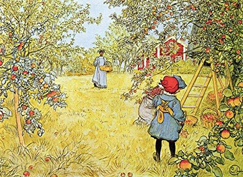 Kunstdruck/Poster: Carl Larsson The Apple Harvest - hochwertiger Druck, Bild, Kunstposter, 55x40 cm -