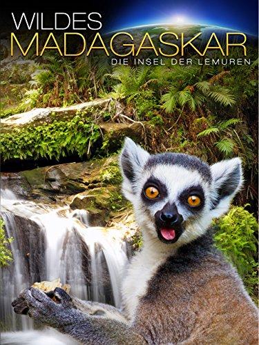 Wildes Madagaskar: Die Insel der Lemuren