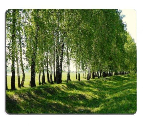 paesaggi-alberi-strade-ombra-scenery-in-mouse-pad-personalizzato-per-sostegno-ready-9-7-8-inch-250-m
