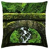 Viejo Verde Puente–Funda de almohada manta (16