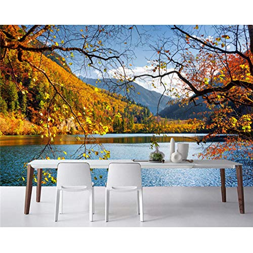 Xbwy Parks Lake Autumn Scenery Nature Photo Landscape 3D Wallpaper,Living Room Sofa Tv Wall Bedroom Bathroom Murals-350X250Cm