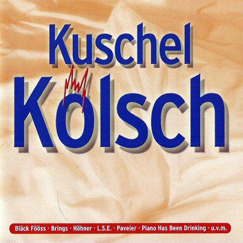 Kölsche Lieder für ne berührende Nubbel Verbrennung (Compilation CD, 18 Tracks)
