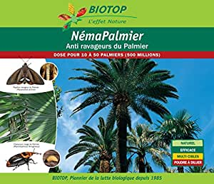 Nématodes Palmier contre le charançon rouge et le papillon palmivore - 500 millions