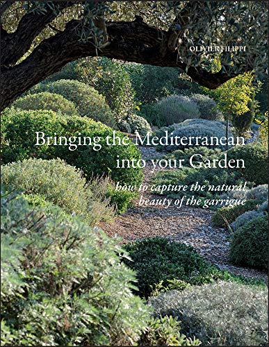 Bringing the Mediterranean into your Garden: How to Capture the Natural Beauty of the Garrigue