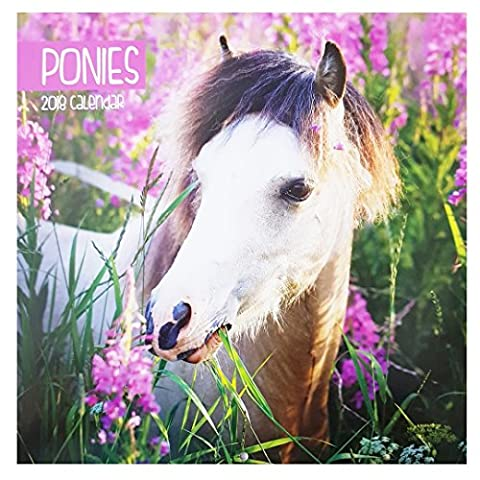 2018 travail Chevaux poneys Poney carré Calendrier mural 16 mois Home Office