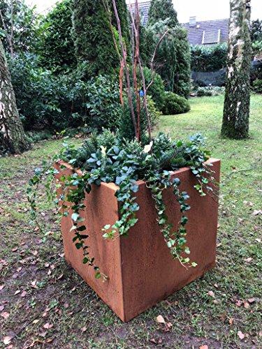Blumenkübel 60 x 60 x 60cm Cortenstahl Rost - Quadratisch für den Garten - Pflanzkübel - Blumentopf - von Beliadesign