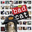 Bad Cat® Wall Calendar 2013