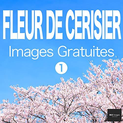 Couverture du livre FLEUR DE CERISIER Images Gratuites 1  BEIZ images - Photos Gratuites