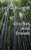 Witches And Snakes - Robot With A Hat (English Edition)